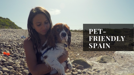 girl holding dog on beach with the caption pet friendly spain