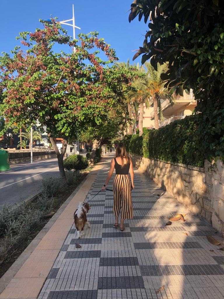 Walking the dog in Benidorm lockdown freedom