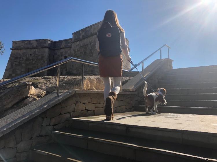 kånken backpack in moraira cavalier king charles spaniel