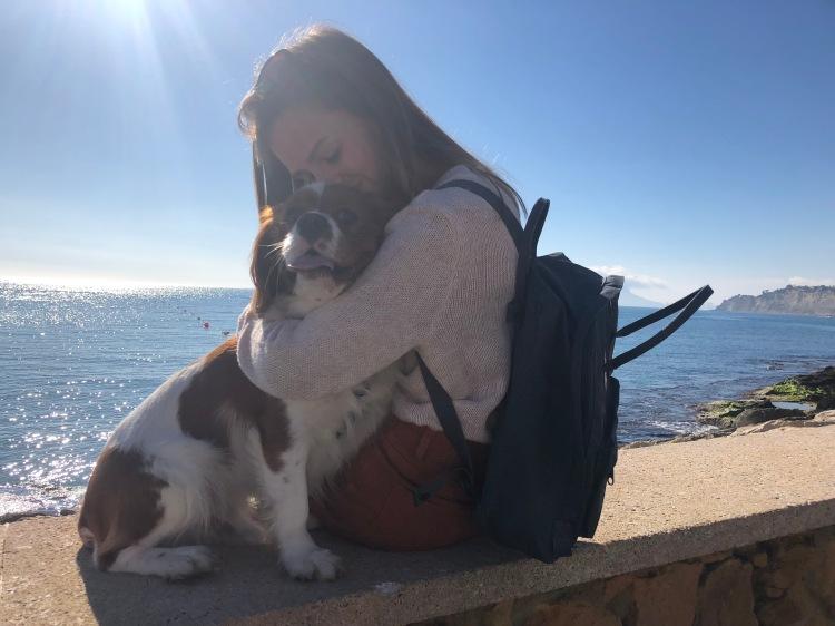 kånken backpack in moraira cavalier king charles spaniel cuddle