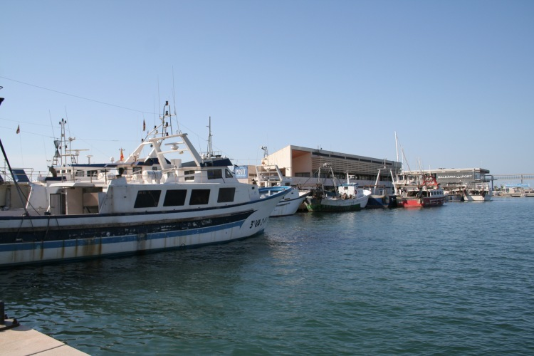 denia port costa blanca