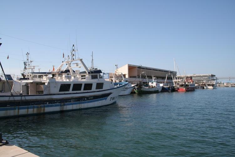 denia port costa blanca