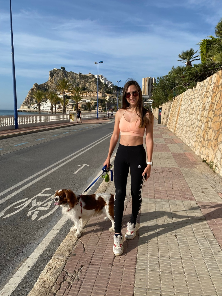 Poniente walk with cavalier King Charles spaniel