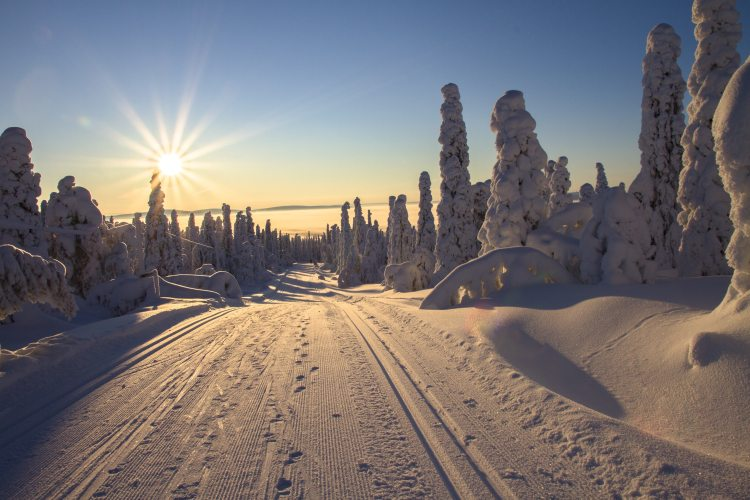 top 5 winter destinations