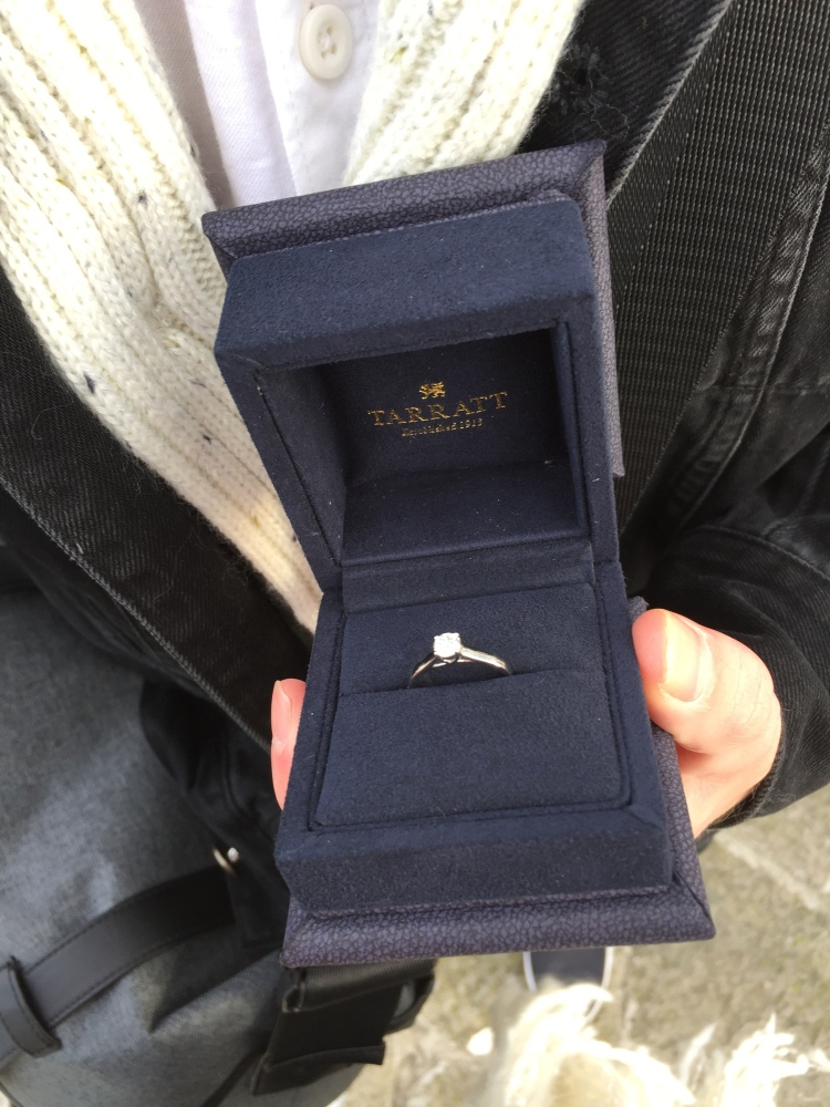 my diamond engagement ring getting engaged in venice italy