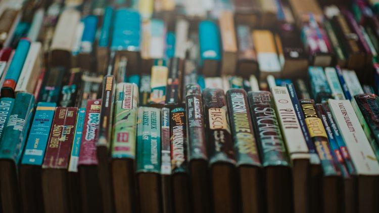 abundance book case benidorm library