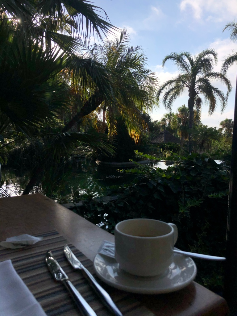 Coffee with a view Asia gardens