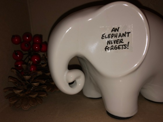 eric the elephant find your gift