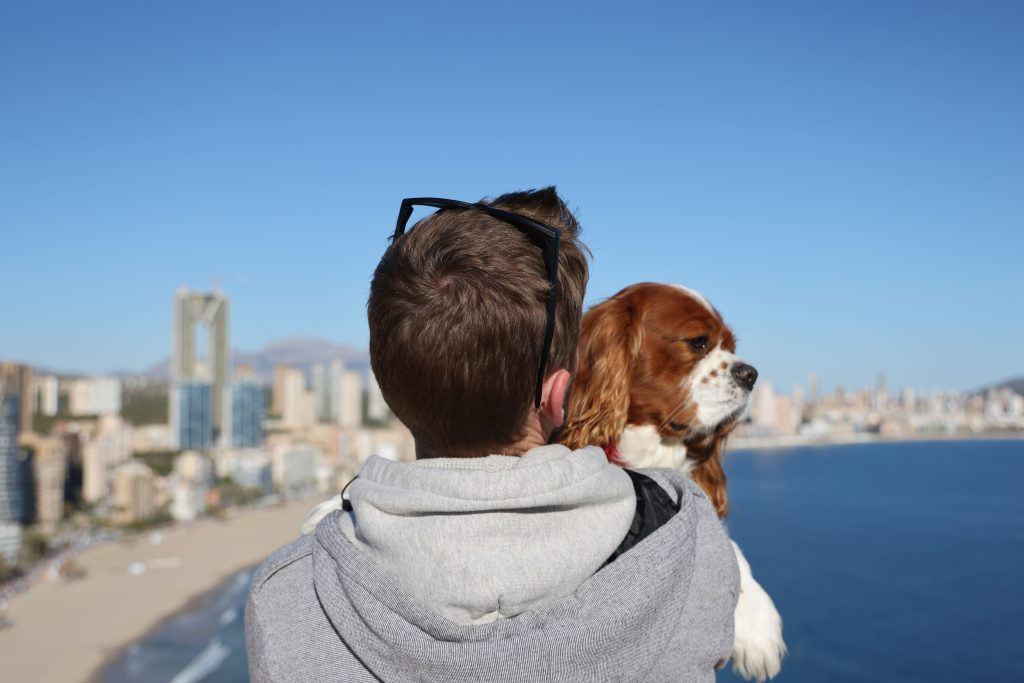 Alex and rio benidorm looking out